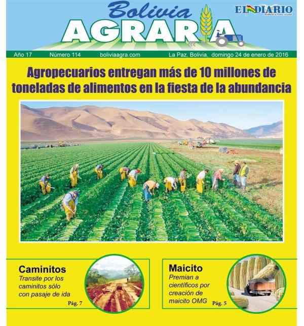 Bolivia agraria alasitas2016