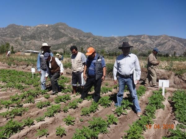 agriiiculturasss