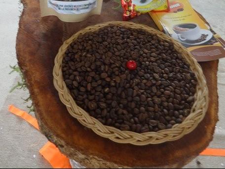 Café de Caranavi2