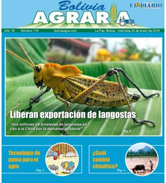 Bolivia agraria 2018 (11)-1